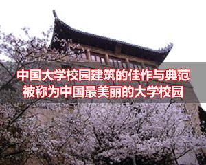 武汉大学上海班