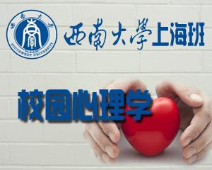 西南大学2017心理学专业硕士(双证)(学校心理学方向)招生简章