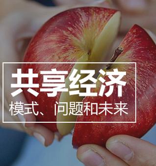 中国在经济体制改革中有哪些值得反思的地方