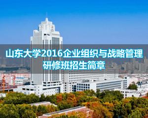 山东大学深圳班企业组织与战略管理