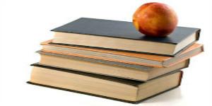 考研小手册:关于在职博士,所有的知识都在这里了